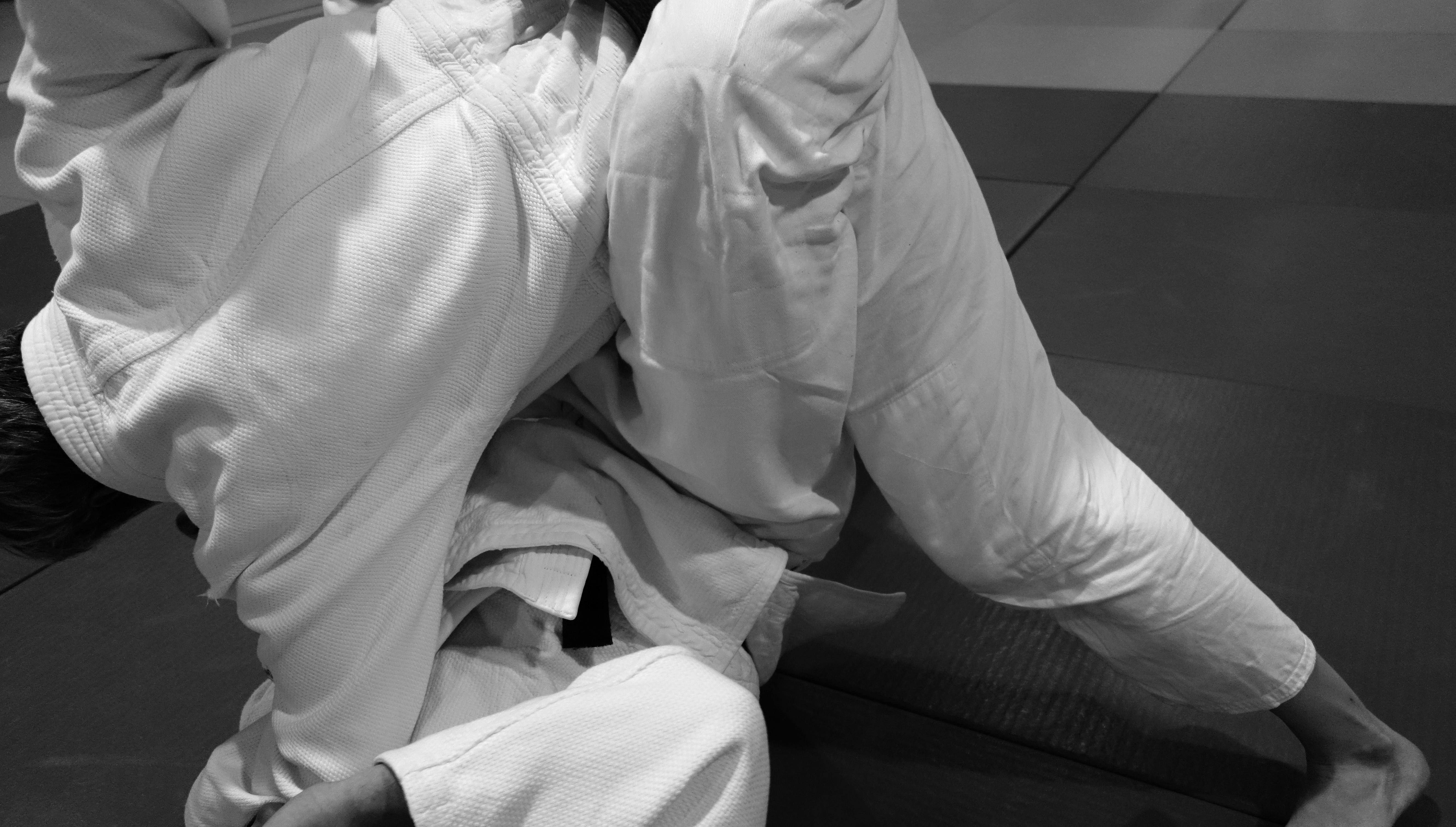 Freestyle Judo, das Regelwerk von Steve Scott